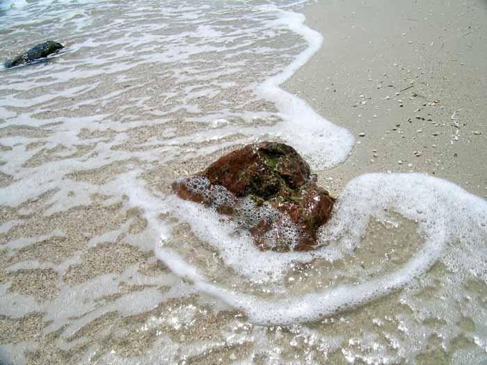 Азовское море фото