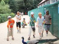 Детский оздоровительно образовательный лагерь