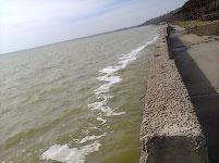 Молочный лиман, Азовское море